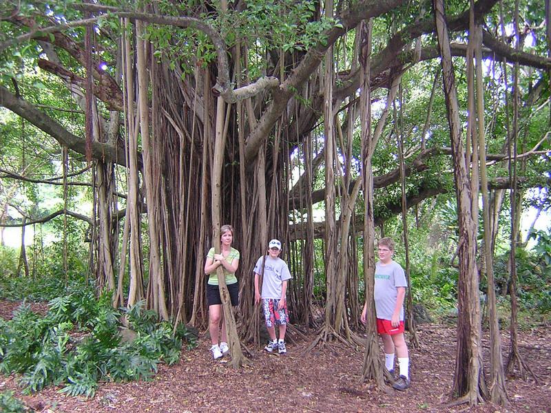 Maui 2005 106