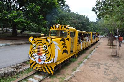 Nehru Zoological Park - Hyderabad Zoo - Part 2