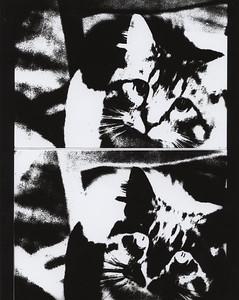 Litho Prints