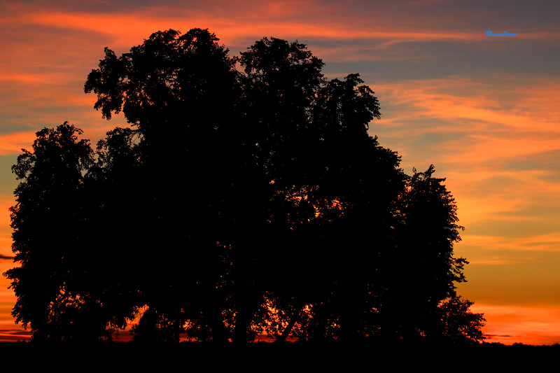 Sunrise in New Mexico July 2015 370.jpg