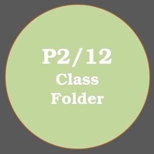 P2/12 ACTIVITIES