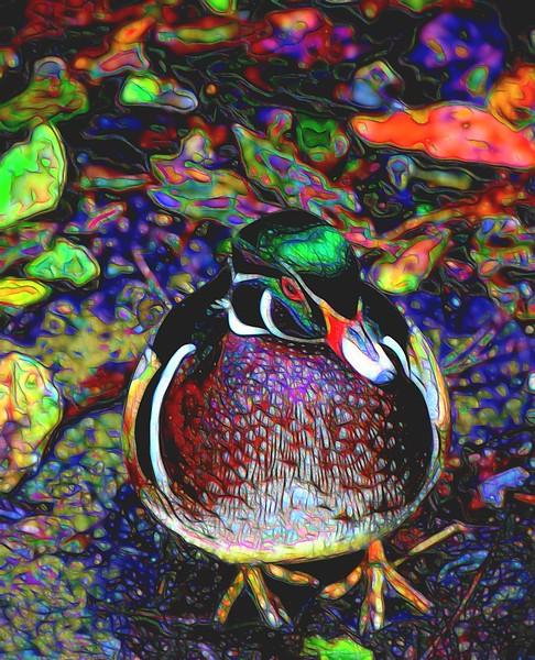 T_enamel duck.jpg