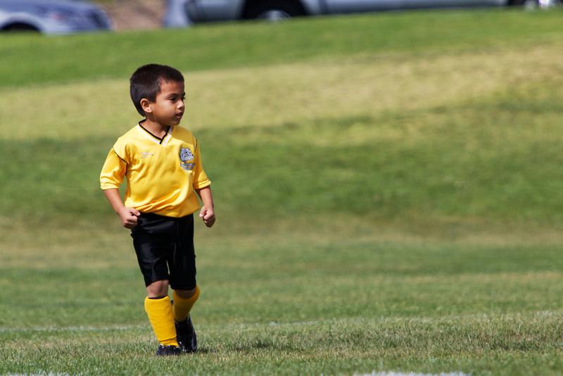 Soccer U8