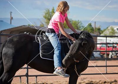 HMH Horsemanship Clinic 10.11.14