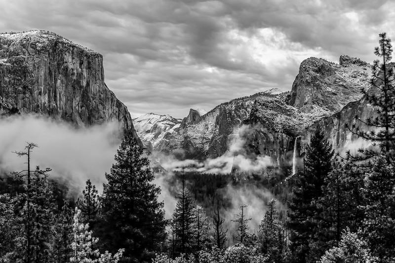 yosemite and sequoia-6036.jpg