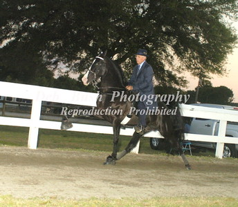 CLASS 24  AMATEUR OWNED & TRAINED SPECIALTY