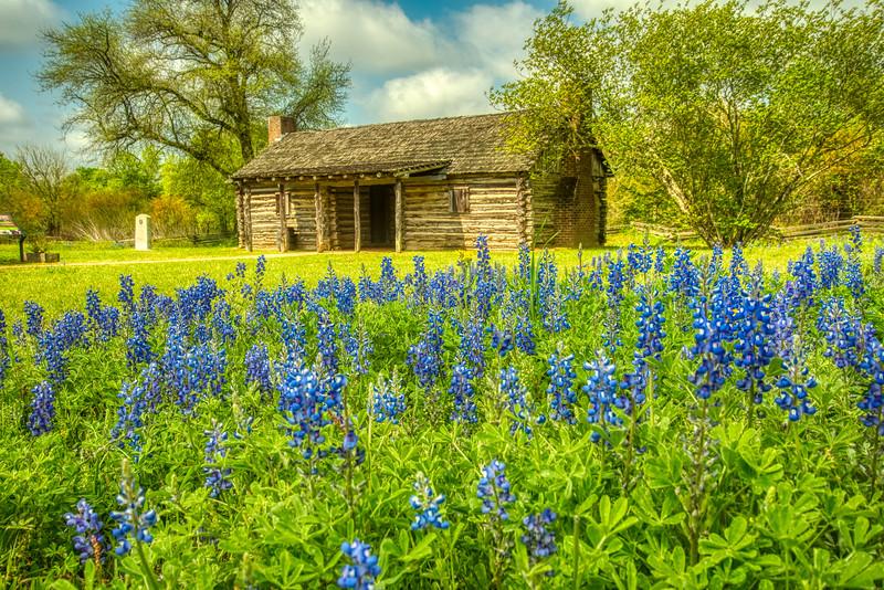 Austin's Cabin