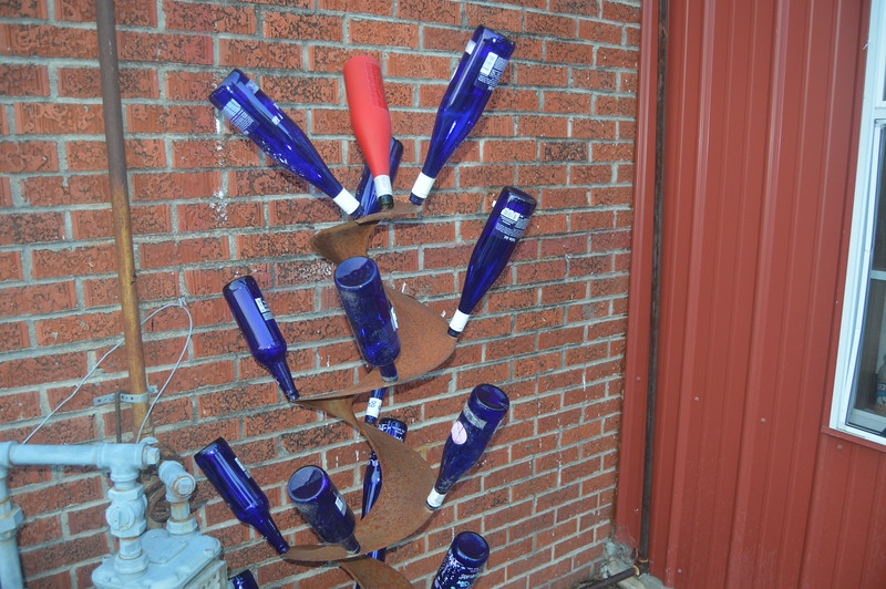 015 Bottle Tree, The Blue Biscuit.JPG