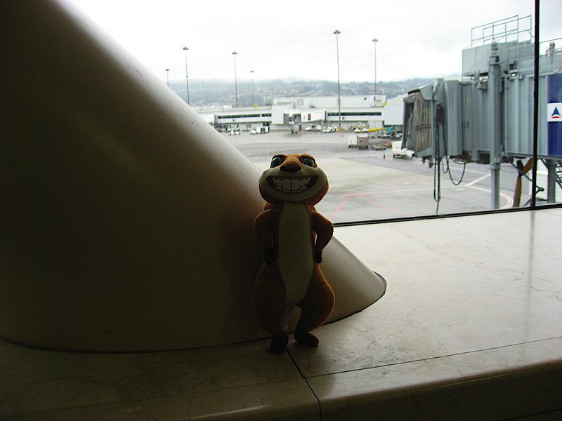 Hammy waiting outside our Delta Flight