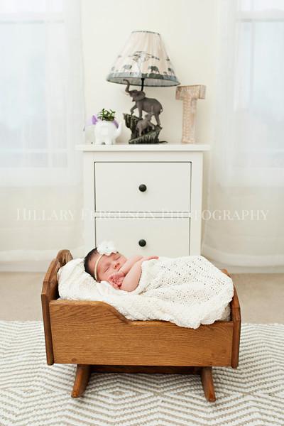 Hillary_Ferguson_Photography_Carlynn_Newborn039.jpg