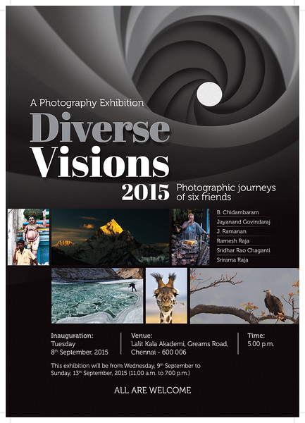 Diverse Visions - 2015