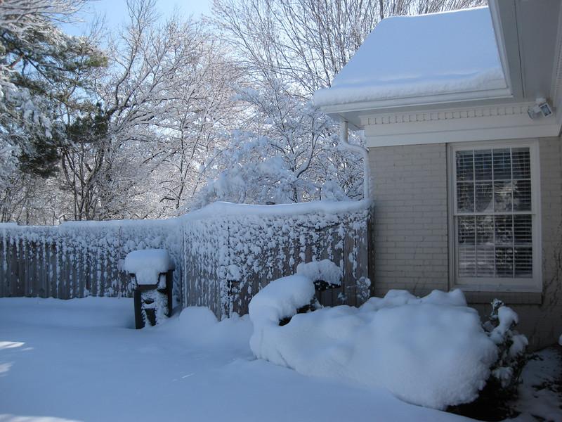 Snow in Jackson_20090301_017.JPG