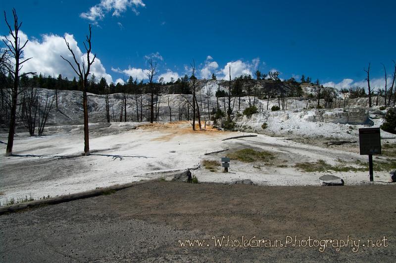 20100713_Yellowstone_2803_1.jpg