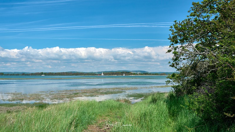 Chichester Harbour-8325 - 12-35 pm.jpg