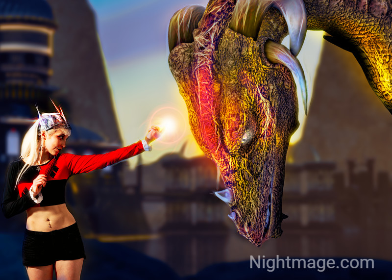 Controlling a Dragon