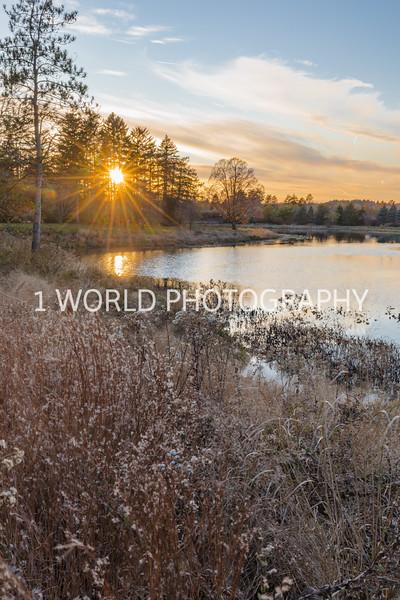 201911052019_11 Morton Arboretum028--4.jpg