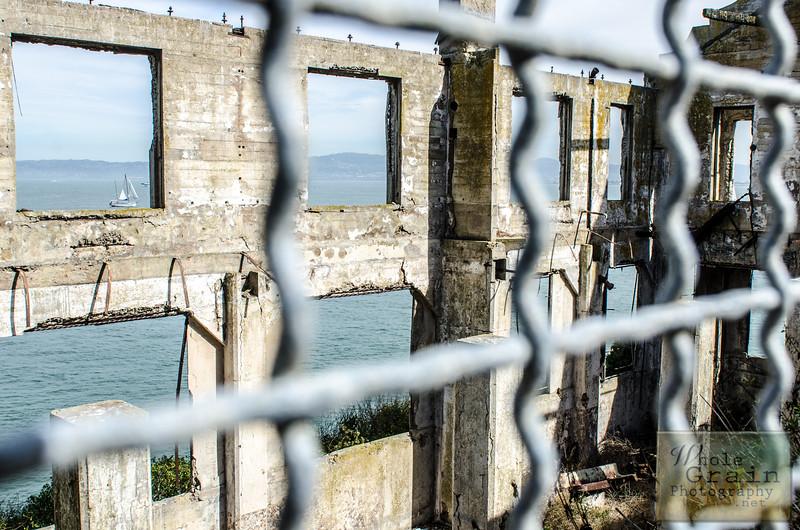 20141016_Alcatraz_0069.jpg