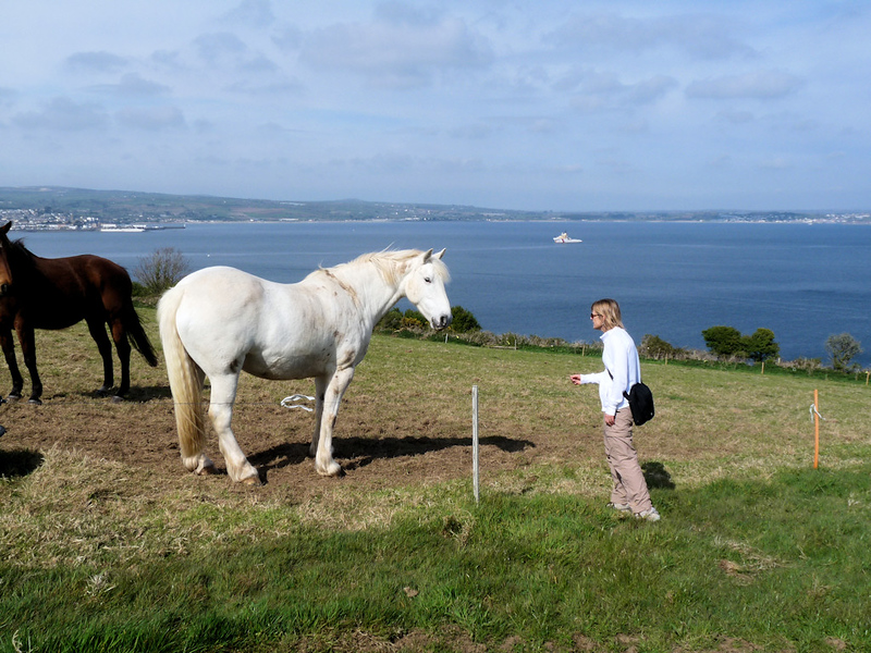 Stef and Horse