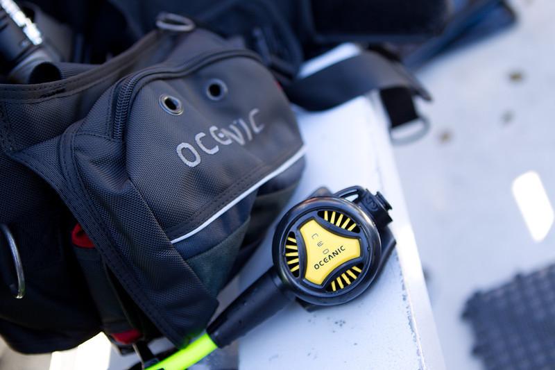 01-05-12_Monterey_Boat_Dive_Roeder_59.jpg