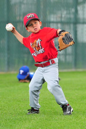 MuckDogs T-Ball 2012