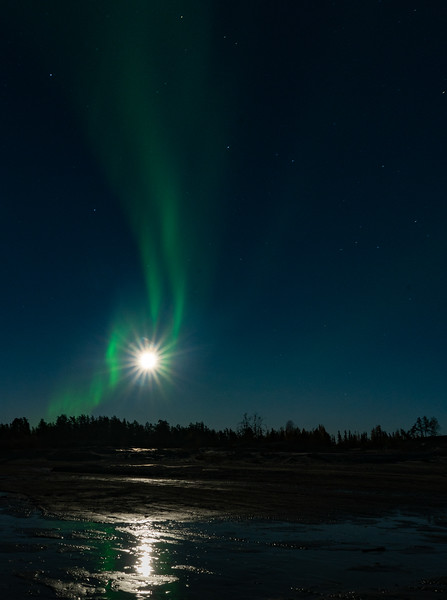 The weekend after Mendo, I headed up to Yellowknife to see this.