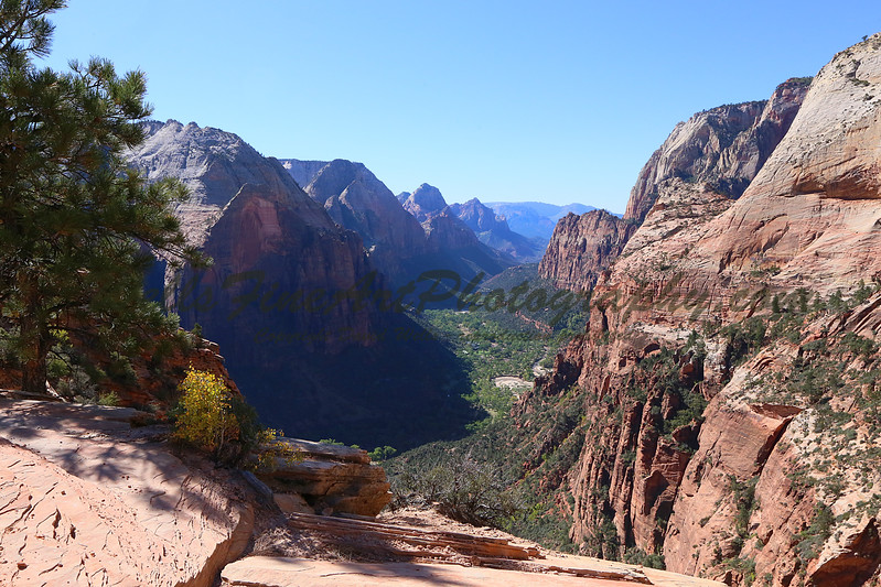 Looking West from Angel's Landing.jpg