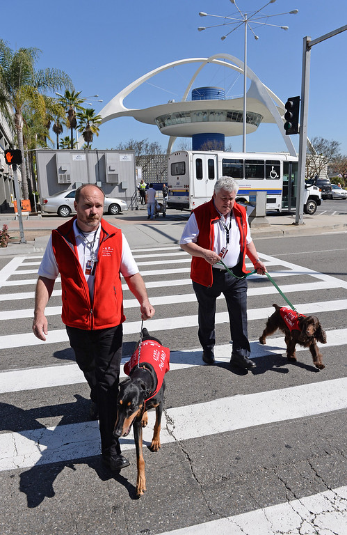 ". Marwick Kane with ""Jackie\"" left, and Rick Pocrass with \""CC\"". New program at LAX called PUP (Pets Unstressing People) uses certified dogs to walk the terminals with their volunteer owners to greet passengers and help ease the tensions of modern airline traveling.   Photo by Brad Graverson 4-11-13"