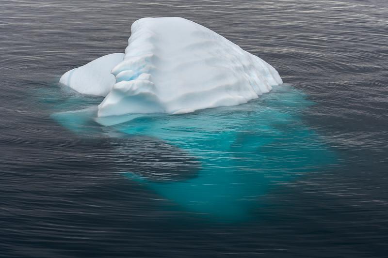 Antarctica-4481.jpg