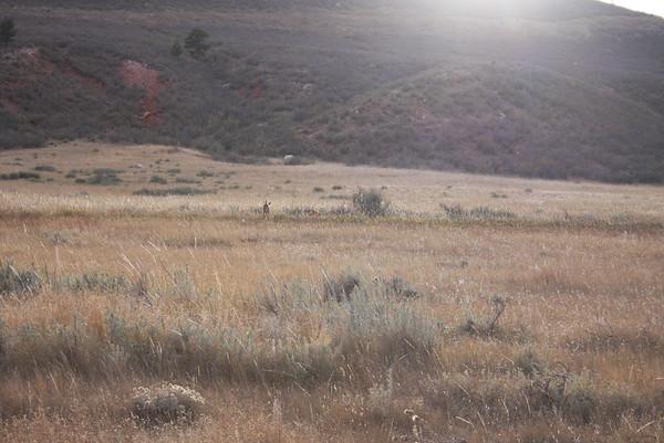 Wyoming 2015