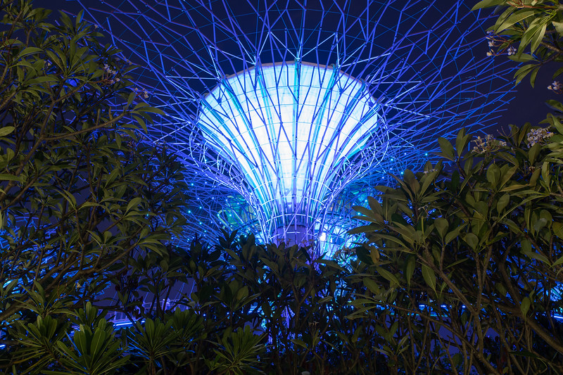 Singapore-19-194.jpg