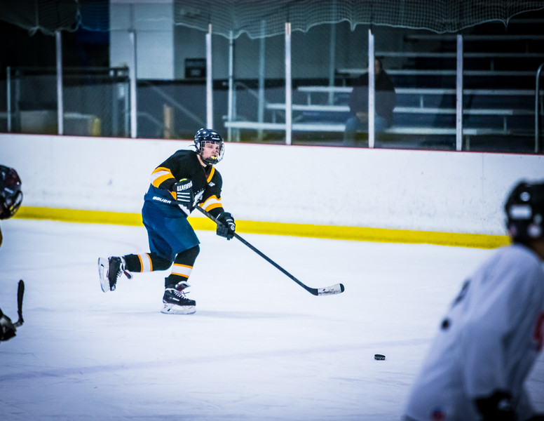 Bruins2-381.jpg
