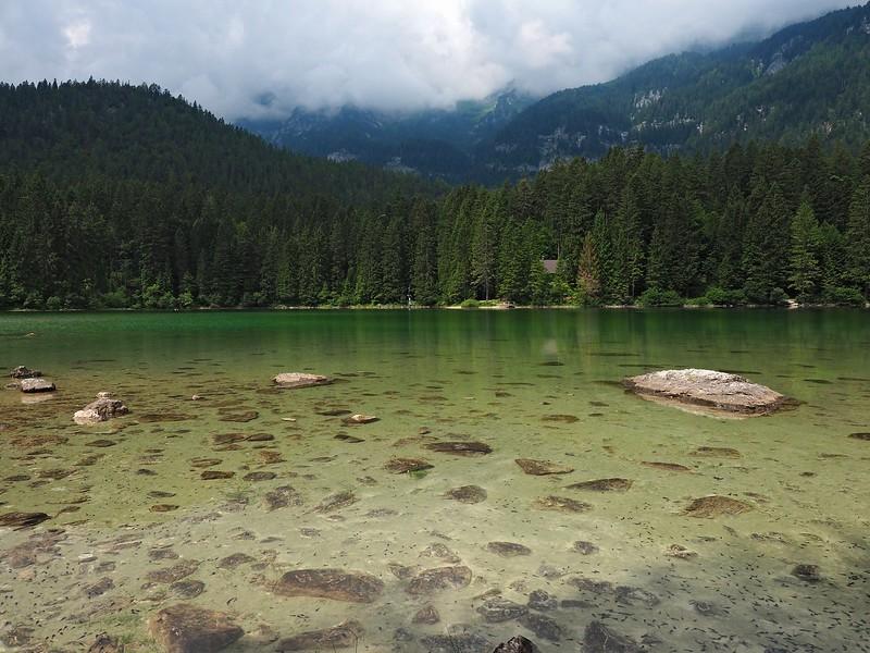 Lago Tovel 10-07-18 (8).jpg