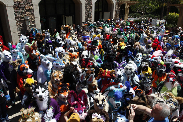 Califur Convention 2014