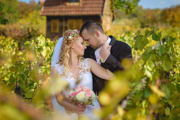 Kristyna & Michal :: Roseta 2016