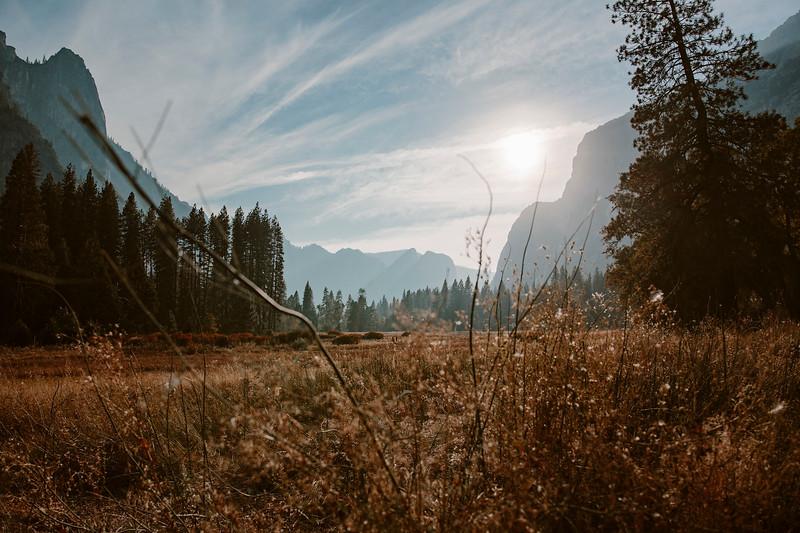 Forest_City_Photographs_Honeymoon_Califonia_San_francisco_Yosimite-163.jpg