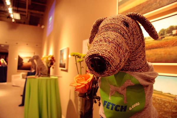 Fetch-A-Cure Progressive Evening