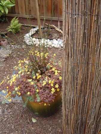 Georgia's garden, Palo Alto, CA