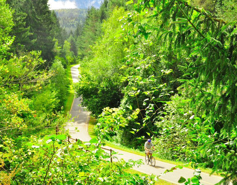 Beautifully maintained trails outside Tarvisio