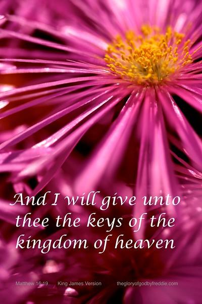 Matthew 16-19 g .jpg