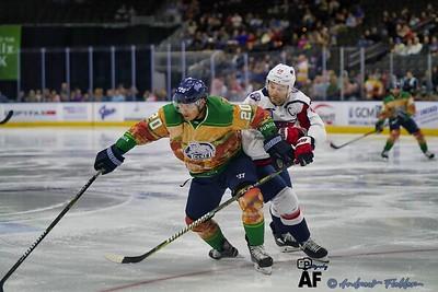 South Carolina Stingrays Vs Jacksonville Icemen 02/16/2020