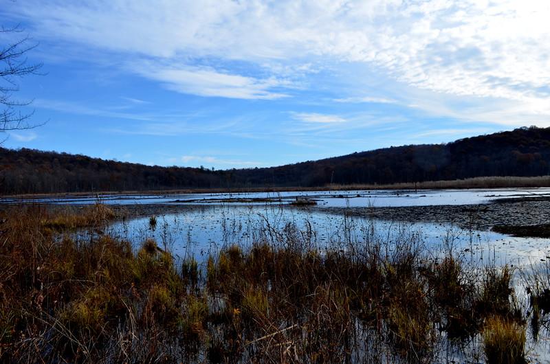 View eastward over wetlands.