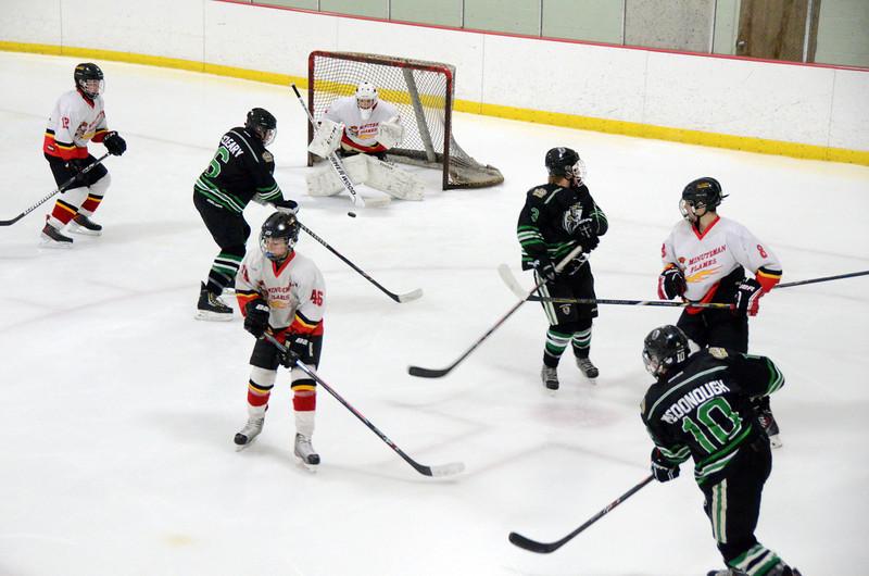 140111 Flames Hockey-010.JPG
