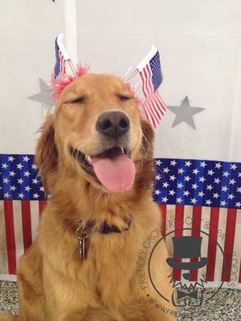 Doggy Daycare - July 2016