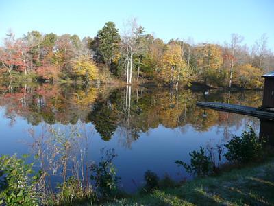 SBC Wetlands Fieldtrip
