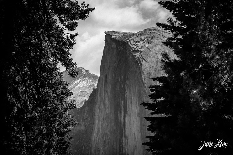 05.2021_Yosemite__DSC7415-Juno Kim-2000.jpg