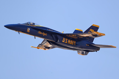 Blue Angels and Thunderbirds Practice 2021