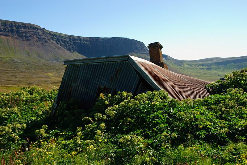 Aðalvík. Lækur. 2010.