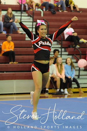 Cheer:  Broad Run Believe in a Cure - Heritage 10.17.2015 (by Steven Holland)