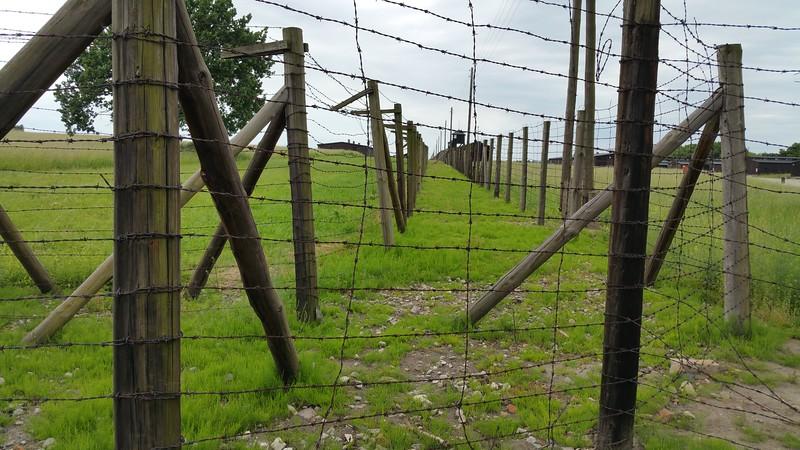 Fence shot.