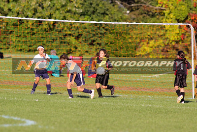 10/10/2008 (Girls U10 Bronze) Northport Elite vs. Mineola Mini Mustangs